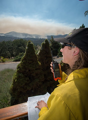 "29126231380_af69e5b265_o (Forest Service Photography) Tags: usdepartmentofagriculture unitedstatesdepartmentofagriculture usda""departmentofagriculture"" forest nationalforest fire wildfire wildland forestfire cedar usforestservice fs forestservice unitedstatesforestservice kernville lakeisabella kernriver tularecounty kerncounty bakersfield posey panoramaheights sugarloaf california ca ponderosa treemorality pinesequoiaredwood adaptivemanagementservicesenterpriseteam amset firebehaviorassessmentteam fbat"