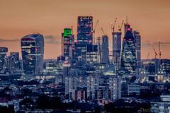 City of London (Daniel Coyle) Tags: city london cityoflondon cityoflondonatnight cityoflondonskyline londonskyline sunsetoverlondon sunset sunsetovercentrallondon citysunset danielcoyle nikon nikond7100 d7100 uk england longexposure sun centrallondon gherkin herontower tower42 towerbridge toweroflondon natwesttower walkietalkie 122leadenhallst skyscraper skyscrapercity skyline 30stmaryax 30stmaryannexe honoroakpark onetreehill