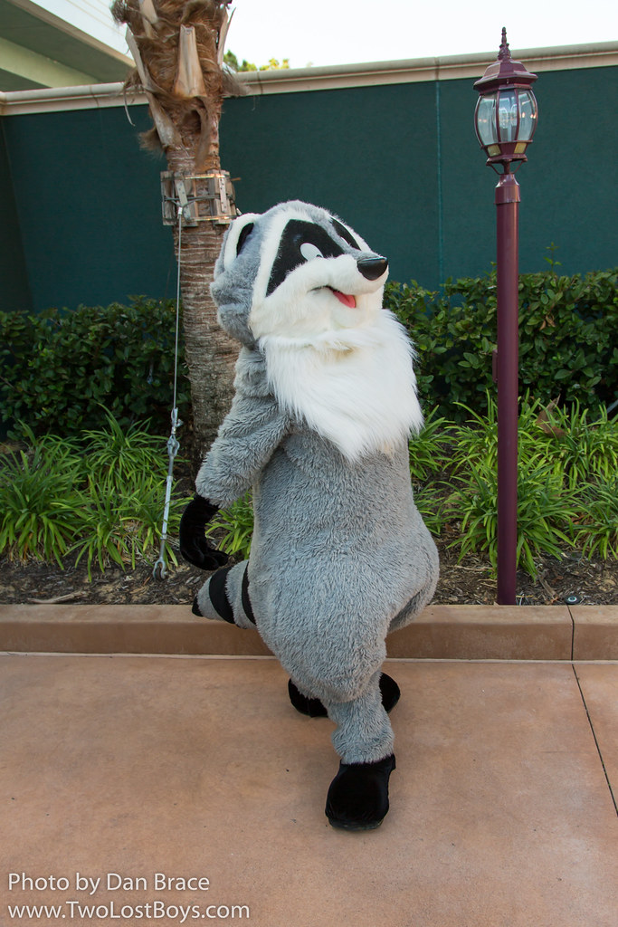 Meeko At Disney Character Central