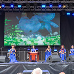 Music group plays on traditional Chinese instruments - Chinafest, Cologne thumbnail