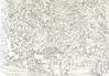 Batsford Arboretum (tobybear) Tags: nature trees sketchpad drawing draw drawn drew art