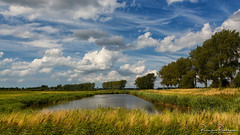 Cloudy sky (BraCom (Bram)) Tags: bracom trees cloud wolk bomen water reed riet creek landscape landschap kreek oudetonge goereeoverflakkee watergat zuidholland nederland southholland netherlands holland widescreen 169 bramvanbroekhoven nl