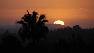 Black Magic Sunset