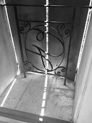 #windows #shutters #shadows #shadowsandlight #blackandwhitephotography #blackandwhite #monochrome #provence (jamiemacpherson359) Tags: windows shutters shadows shadowsandlight blackandwhitephotography blackandwhite monochrome provence