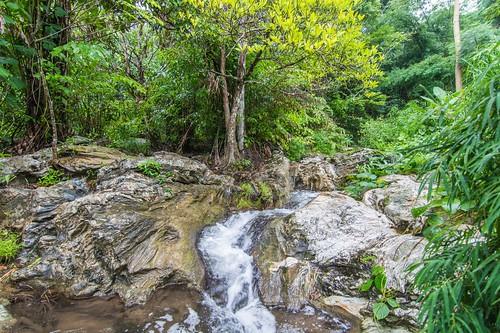 tak - thailande 31