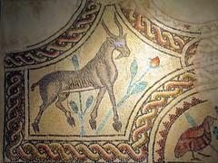 Gazelle Mosaic (D-Stanley) Tags: mosaic gazelle hammamassarah umayyad amman jordan