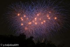 _IMG5947.jpg (y.takahashi84) Tags: hanabi fireworks 花火 さいたま urawa 浦和 東浦和 saitama 日本の夏 summer japan