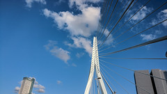 Erasmusbrug (alexx4444) Tags: erasmusbrug erasmus rotterdam netherlands bridge sky blue clouds small tiny white lines oneplus 3t photo shot