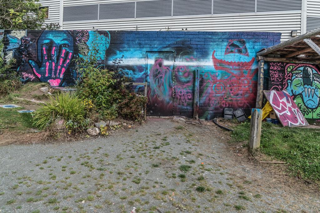 WATERFORD WALLS [AN ANNUAL INTERNATIONAL STREET ART FESTIVAL]-132255