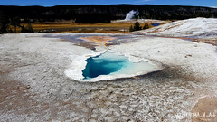 20160911_121613_1 (pleroma_4_all) Tags: yellowstone yellowstonenationalpark oldfaithful nature zen beauty naturebeauty landscapes nationalparks usa wyoming wolves bears bison buffalo foxes mountains hiking outdoors grandteton tetons geysers grandprismatic springs