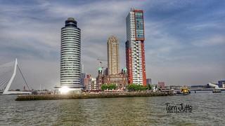 Kop van Zuid, Rijnhaven, Rotterdam, Netherlands - 5269