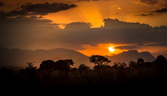 Looking through the gates of heaven (liesbet_sanders) Tags: sunset sun light orange golden nature travel evening uganda africa eastafrica outside