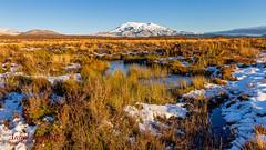 Lake Front Mountain (Anneka Barritt Photography NZ) Tags: finished landscapes noedit ruapehu sunset tongariro baldy bluesky cloudlesssky lake mountain nationalpark snow tussock water