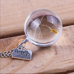 Genuine Dandelion in Glass (BOHOroad) Tags: dandelion wishes