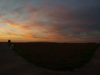 Sonnenaufgang Sophienhöhe.