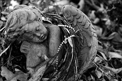 There's No One Crying Over Me Either (nedlugr) Tags: theresnoonecryingovermeeither americanwrestlers ca california usa ojai ojaicalifornia cemetery venturacounty statue blackandwhite bw angel grave