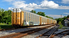 CSX freight train at Martinsburg (SchuminWeb) Tags: schuminweb ben schumin web june 2017 berkeley county martinsburg west virginia wv westvirginia train trains railroad railroads rail roads road transportation transport autorack autoracks auto rack racks car carrier carriers csx chessie system freight rails track tracks