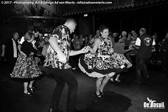2017 Bosuil-Het publiek bij Steady State 11-ZW