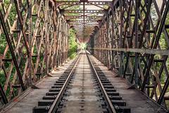 Lines (Jan Moons) Tags: france frankrijk lot rail railway track bridge lines old abandoned nikon nikond600 d600 lightroom edit iron wide angle uwa 2470 28 tamron gate walkway