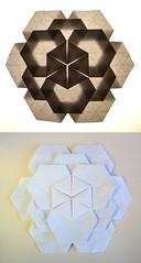 Simple Tessellated Flower (Rui.Roda) Tags: origami papiroflexia papierfalten tessellation simple tessellated flower