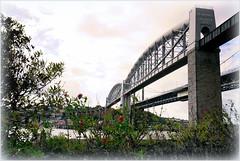 Crossings (PAUL YORKE-DUNNE) Tags: river tamar bridge bridges brunel railway road saltashpassage plymouth sonya7r2 paulydphotography 1635mmsony saltash
