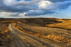 """The long way to the horizon* (albert.wirtz) Tags: toskana tuscany toscana acker felder weg unpavedroads feldweg horizont thelongwaytothehorizon derlangewegzumhorizont abendlicht sonnenuntergang sunsetlight sunset albertwirtz nikon d700 landscape sky hügel hügelig hillsoftuscany hügeldertoskana italia italien italy sanquiricodorcia torrenieri latesummer septemberfields septemberlight impressive goldenlandscape nature natura natur paysage"