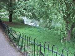 park 237a (*a*dalton*) Tags: worcester uk park trees water reflections green