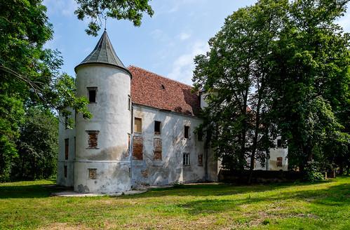 Chobienia castle