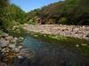 Río Loro (0) (Jorge José Orr) Tags: río agua algas tucumán