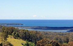 Lot 105 Woodlands Lane, Bald Hills NSW