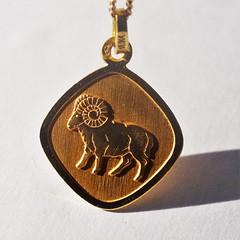 Zodiac - for Macro Monday (annesjoberg) Tags: capricorn zodiac starsign stjärntecken macromondays macro au gold guld neckles halsband goldchain guldkedja