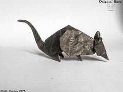 Origami Rata - Barth Dunkan. (Magic Fingaz) Tags: rat rata ラット плъх 鼠 쥐 αρουραίοσ tikus szczur крыса krysa หนู sıçan origami origamirat barthdunkan