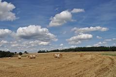 out of cam (Uli He - Fotofee) Tags: ulrike ulrikehe uli ulihe ulrikehergert hergert nikon nikond90 fotofee heuballen heu plätzer burghaun stroh strohballen himmel wolken sommer august ernte erntezeit