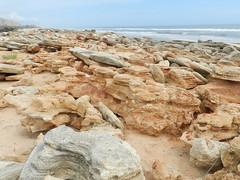 Coquina-Strewn Beach (dnborgman) Tags: ocean sea beach sand coquina florida