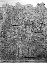 Assyrian Galleries-British Museum (Chris Draper) Tags: sea water monochrome blackandwhite assyria assyrian sculpture reliefs museum archaeology britishmuseum carved carving carvedpanel stone mythical mythology culture ancientculture