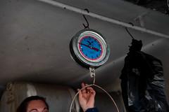 Iniciamos fiscalizaciones en las Ferias Libres de Cerro Navia (Municipalidad de Cerro Navia) Tags: cerronavia cerro navia canon canon5dmarkii feriaslibres iniciamosfiscalizaciones