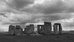 A Feast for Crows - Happy Monochrome Monday! (lunaryuna) Tags: stonehenge prehistoricmonument standingstones stonecircle megalithic wiltshire amesbury england panoramicviews blackwhite bw monochrome monochromemonday hmm lunaryuna