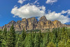 Castle Mountain - Alberta (Reddad Ford) Tags: 2017 alberta banff castle castlemountain july lakelouise mountains animals blueskies clouds coniferous trees