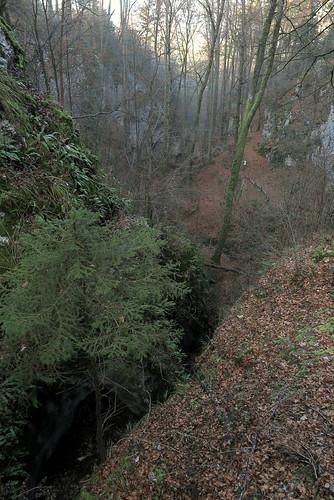 Ruine Fürstenstein_Herbst_05
