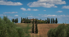 Italy - The Gladiator house in Tuscany (Toon E) Tags: 2017 italy tuscany sanquiricodorcia valdorcia trees cypress cypresses valley villa gladiator hollywood rusellcrowe sony 7rm2 zeiss sonyfe2470mmf4 outdoors travel