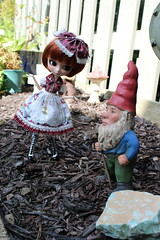 IMG_0530 (Dollymama2015) Tags: pullipmerl doll groovedoll redhead ginger lolitastyle dolldress handmadedollclothes sugarlattice gnome garden outdoors