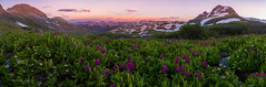 Grandeur in the Grenadiers (PatrickDillonPhoto.com) Tags: grenadiermountains sunset wildflowers colorado nature god creation alpine sanjuanmountains landscapephotography hiking peaks weather summer