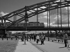 Sonntags am Mainufer - Höhe EZB (HP-Fotografie) Tags: germany hessen frankfurt am main mainufer