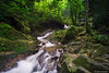 Jungle Waterfalls (GilbertChuaCS) Tags: waterfalls water forest jungle sony ilce6000 samyang nisi cpl gnd09 landscape longexposure nature