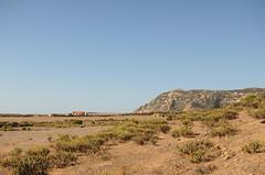 vacanze sarde_-72 (Trittonando) Tags: asinara sardegna sardinha asinello bianco carcere