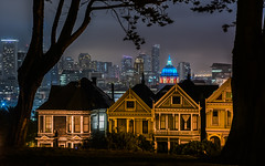 for what it's worth (pbo31) Tags: bayarea california evening nikon d810 color september 2017 summer boury pbo31 night dark sanfrancisco black alamosquare paintedladies skyline cityhall silhouette park overcast fog city urban over