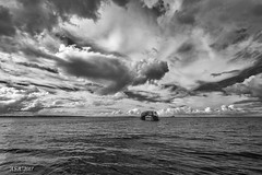 "High Tide (""A.S.A."") Tags: belhaven bridge dunbar eastlothian scotland britain coast northsea hightide infrared830nm seascape cloud sonya7rinfrared830nm canonef1740mmf4lusm wideangle blackwhite mono monochrome greyscale niksoftware silverefex asa2017"