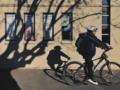 Everyday #Adelaide No. 425 (North Adelaide) (michelle-robinson.com) Tags: 4tografie everyday observations street streetphotography australia adelaide adelaideartist southaustralia life michellerobinson adelaidephotographer documentary dailylife flickrelite candid beauty streetlife people ipadpro iphone7plus ipadproedit snapseed iphoneography vsco shotoniphone procamera colour bicycle tree windows shadows man cycling photography exterior cyclist building