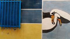 Murales in Diamante - Italy (claudiaschmidt2) Tags: murales gabbiano seagull möwe