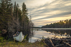 Sun down (Jackx001) Tags: 2017 camping canada jacknobre labourday nature ontario photography september weekend wild sunset inthewoods forest canoe water gaia lake beaverdam